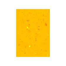 U.S. Army JROTC Logo